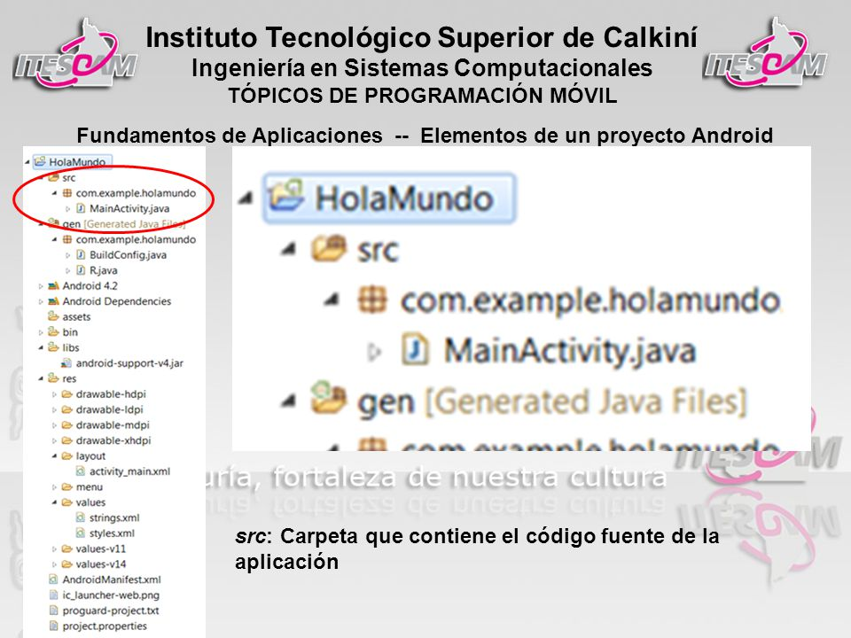 Instituto Tecnológico Superior de Calkiní Ingeniería en Sistemas Computacionales TÓPICOS DE PROGRAMACIÓN MÓVIL Fundamentos de Aplicaciones -- Elementos de un proyecto Android src: Carpeta que contiene el código fuente de la aplicación