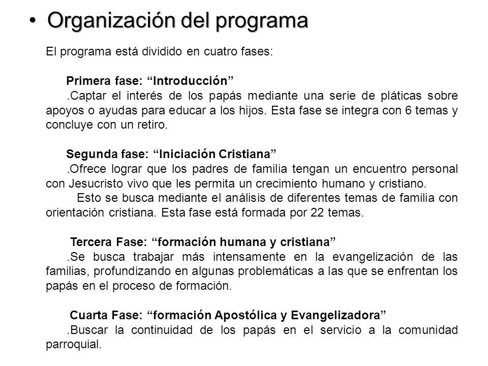 Organización del programaOrganización del programa El programa está dividido en cuatro fases: Primera fase: Introducción.Captar el interés de los papá