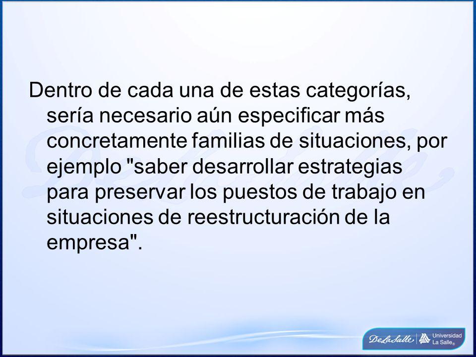 Dentro de cada una de estas categorías, sería necesario aún especificar más concretamente familias de situaciones, por ejemplo saber desarrollar estrategias para preservar los puestos de trabajo en situaciones de reestructuración de la empresa .