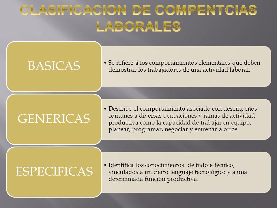 Evaluar la competencia laboral del candidato.