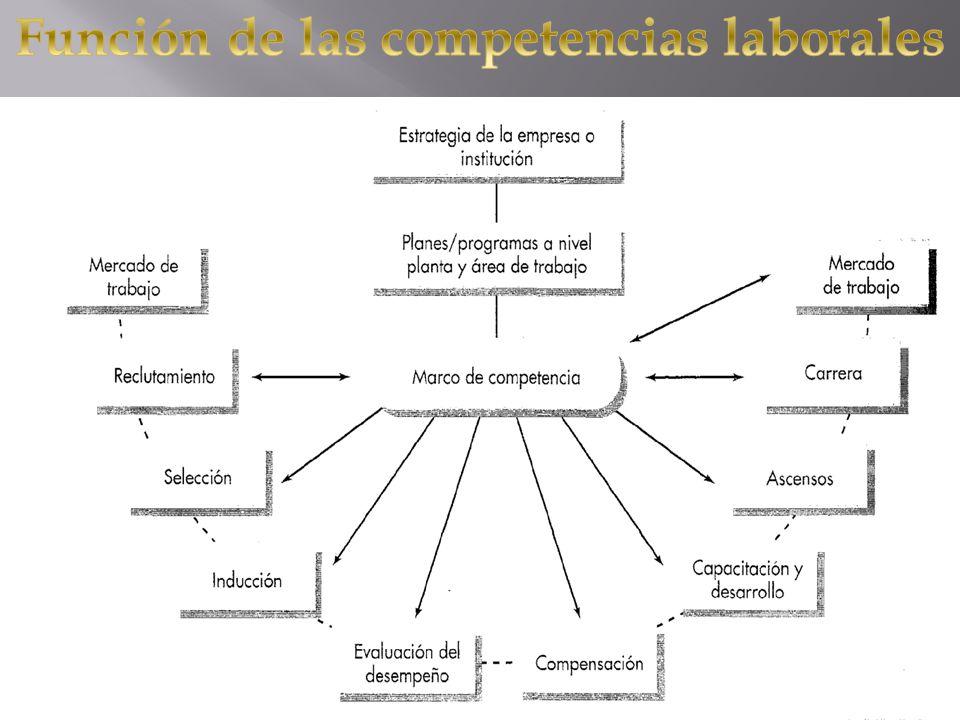 Las certificaciones de competencias laborales son expedidas por organismos autónomos al sector educativo formal, así como a los capacitadores de las empresas y/o comisiones mixtas obrero-patronales, para garantizar independencia entre el que enseña y el que evalúa el conocimiento.
