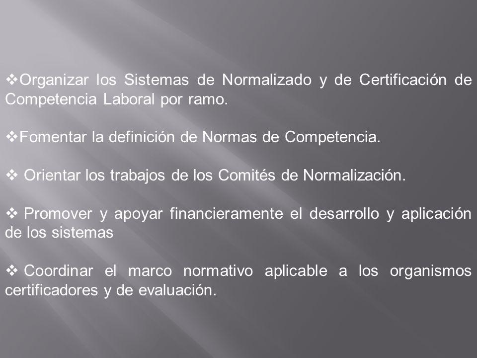 Organizar los Sistemas de Normalizado y de Certificación de Competencia Laboral por ramo. Fomentar la definición de Normas de Competencia. Orientar lo