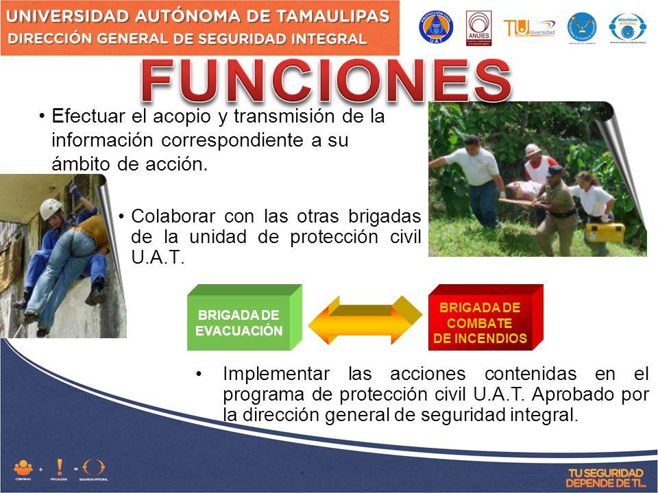 BRIGADA DE EVACUACIÓN BRIGADA DE COMBATE DE INCENDIOS Efectuar el acopio y transmisión de la información correspondiente a su ámbito de acción.