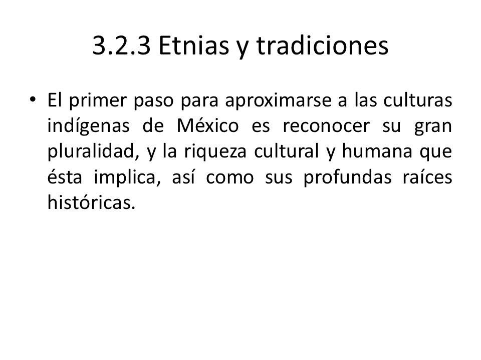 3.2.3 Etnias y tradiciones El primer paso para aproximarse a las culturas indígenas de México es reconocer su gran pluralidad, y la riqueza cultural y