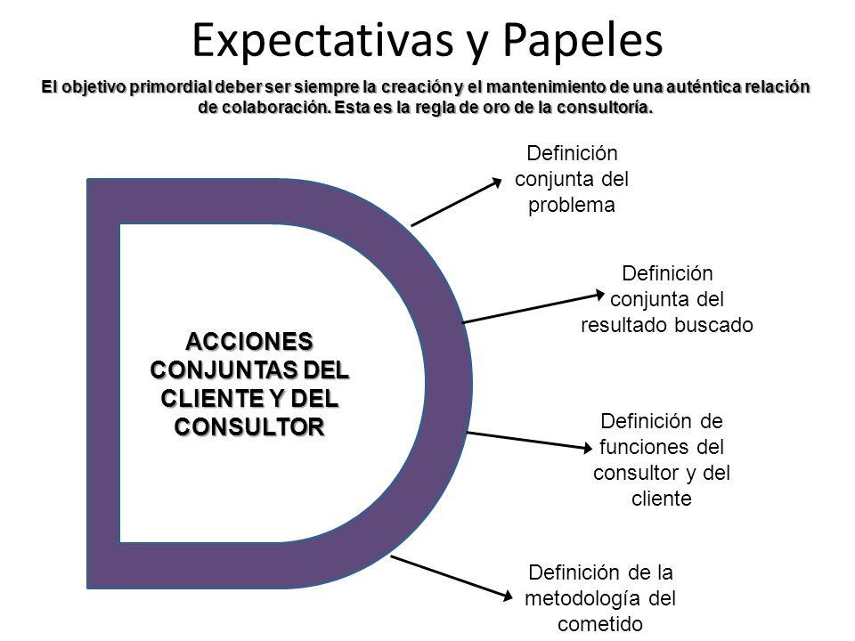 Expectativas y Papeles Definición conjunta del problema Definición conjunta del resultado buscado Definición de funciones del consultor y del cliente