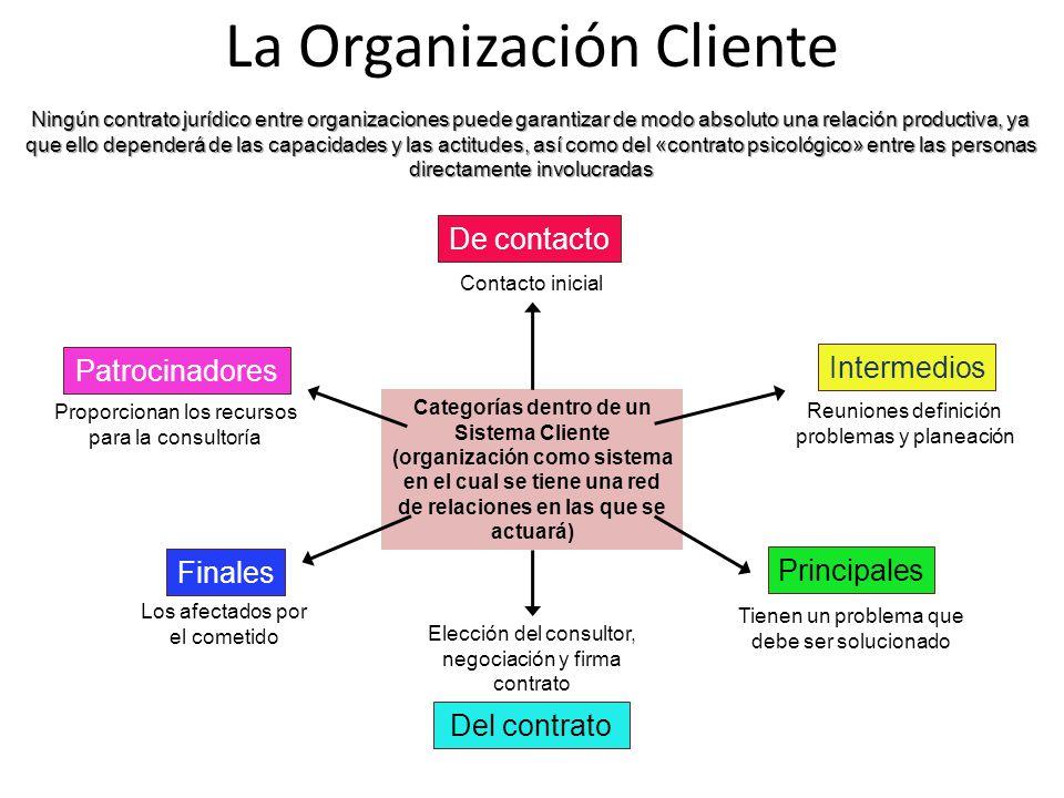 Categorías dentro de un Sistema Cliente (organización como sistema en el cual se tiene una red de relaciones en las que se actuará) La Organización Cl