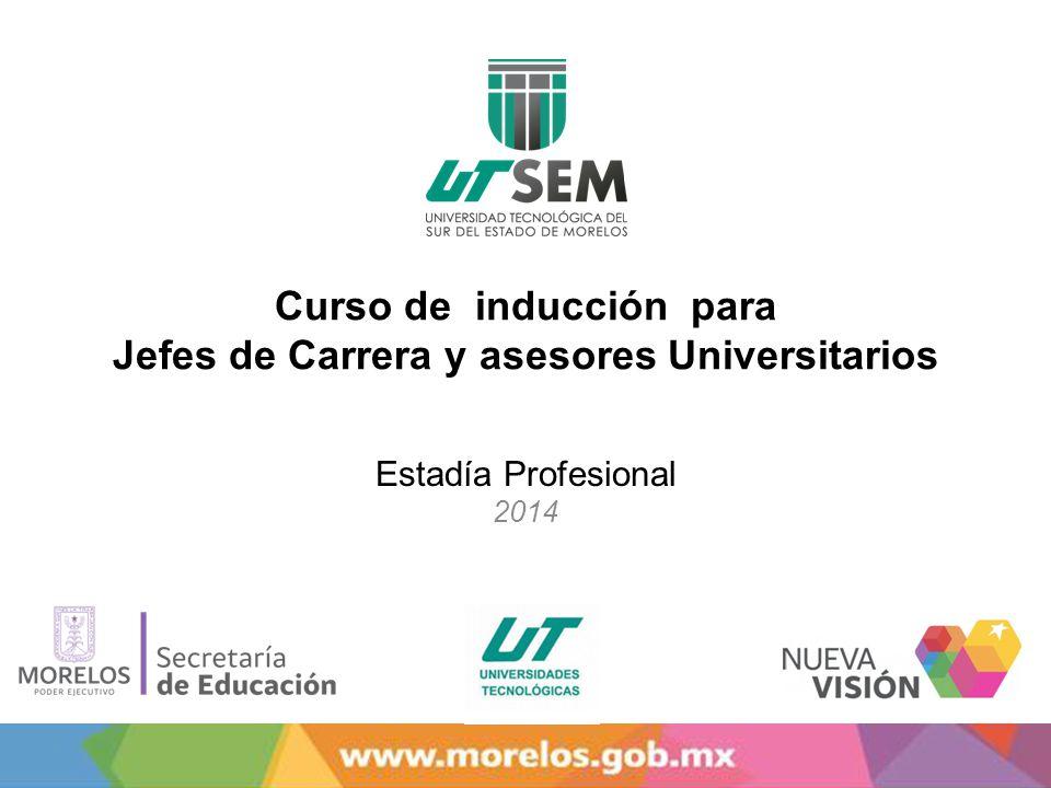 Curso de inducción para Jefes de Carrera y asesores Universitarios Estadía Profesional 2014