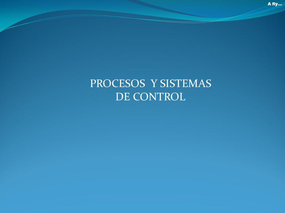 PROCESOS Y SISTEMAS DE CONTROL A fly…