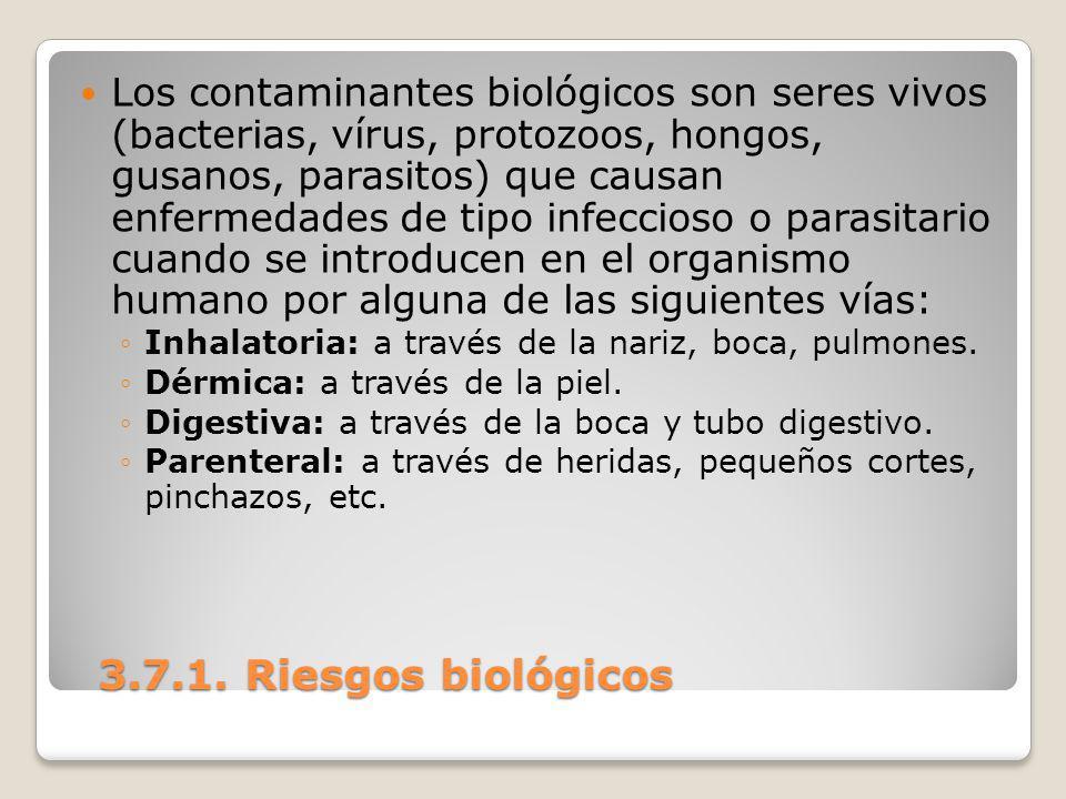 3.7.1. Riesgos biológicos 3.7.1. Riesgos biológicos Los contaminantes biológicos son seres vivos (bacterias, vírus, protozoos, hongos, gusanos, parasi