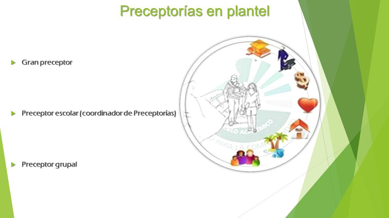 Preceptorías en plantel Gran preceptor Gran preceptor Preceptor escolar (coordinador de Preceptorías) Preceptor escolar (coordinador de Preceptorías) Preceptor grupal Preceptor grupal