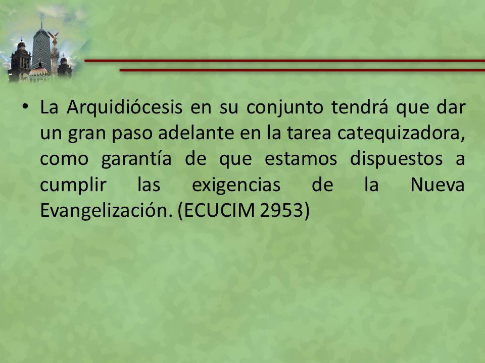 Así pues la formación es el elemento primordial de la pastoral de los catequistas: perfil, áreas de formación, especialización, espacios y centros formativos.