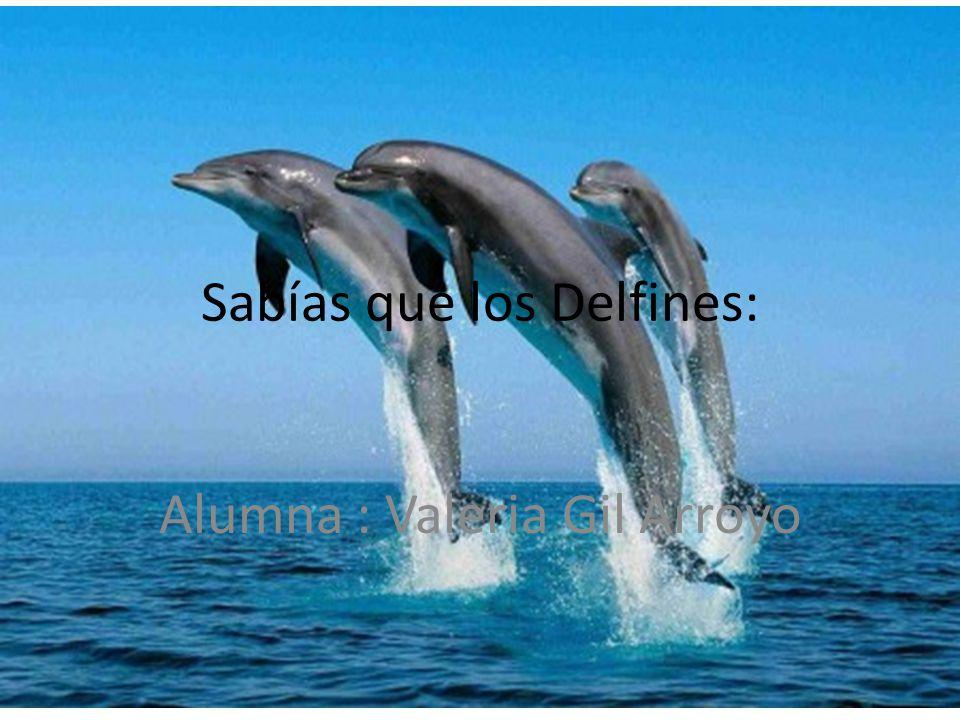 Sabías que los Delfines: Alumna : Valeria Gil Arroyo