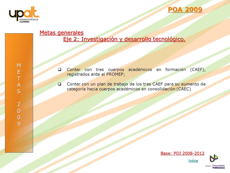 METAS2009 POA 2009 POA 2009 Contar con tres cuerpos académicos en formación (CAEF), registrados ante el PROMEP; Contar con un plan de trabajo de los t