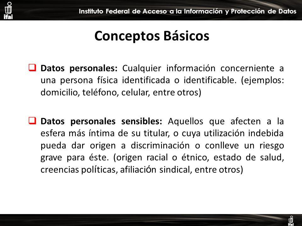 Informe de Autoevaluación primer semestre 2009 Instituto Federal de Acceso a la Información y Protección de Datos Conceptos Básicos Datos personales: Cualquier información concerniente a una persona física identificada o identificable.