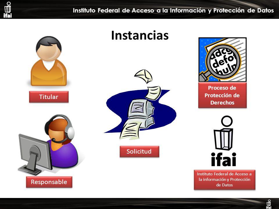 Informe de Autoevaluación primer semestre 2009 Instituto Federal de Acceso a la Información y Protección de Datos Titular Responsable Instituto Federal de Acceso a la información y Protección de Datos Proceso de Protección de Derechos Instancias Solicitud
