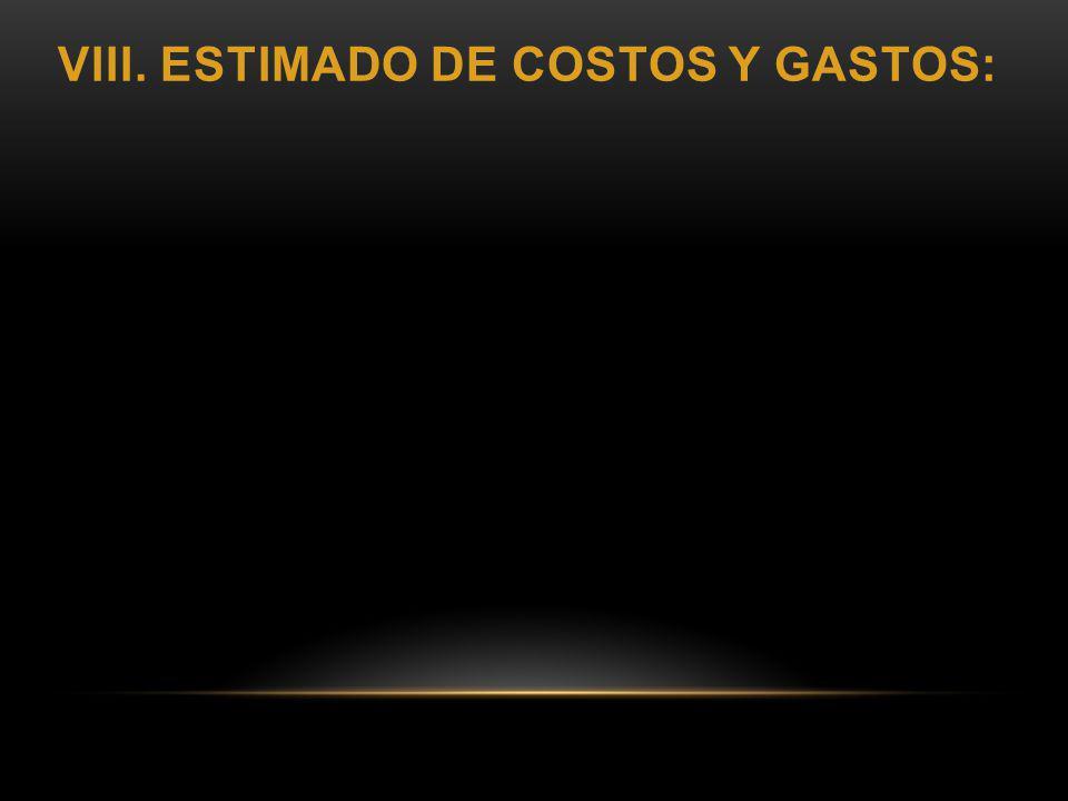 VIII. ESTIMADO DE COSTOS Y GASTOS: