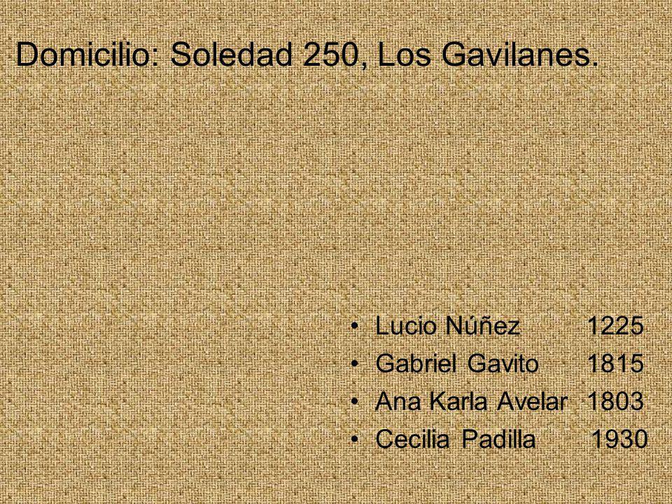 Domicilio: Soledad 250, Los Gavilanes.