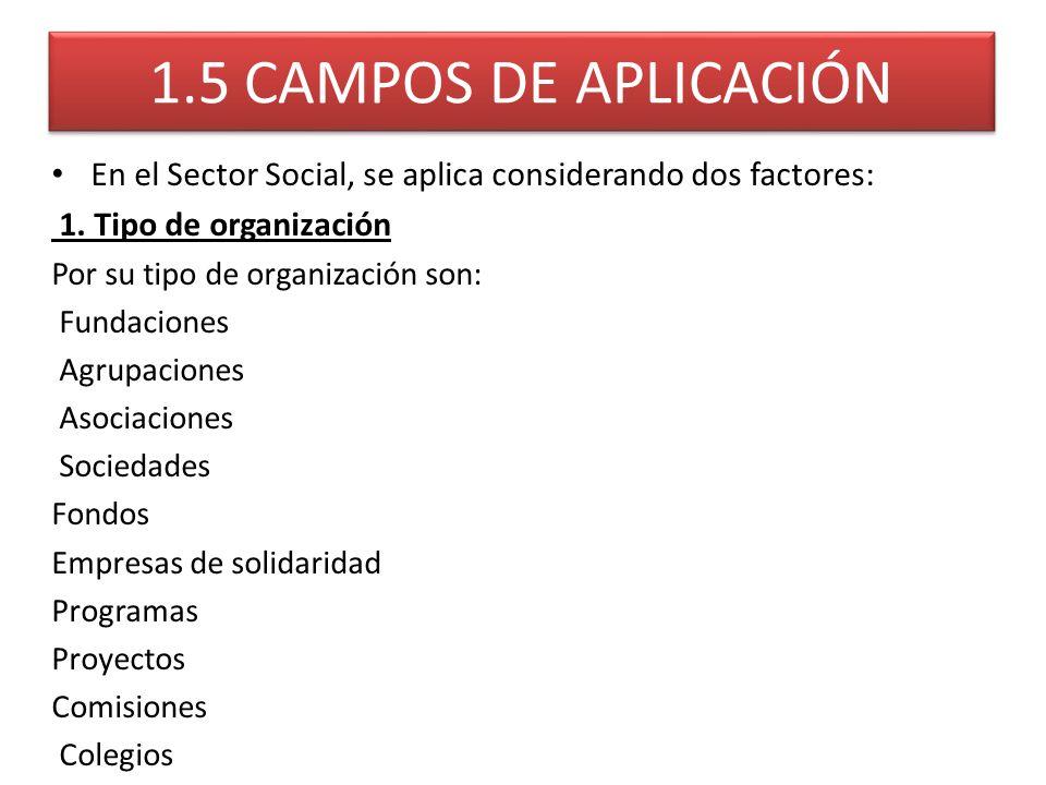 1.5 CAMPOS DE APLICACIÓN En el Sector Social, se aplica considerando dos factores: 1. Tipo de organización Por su tipo de organización son: Fundacione