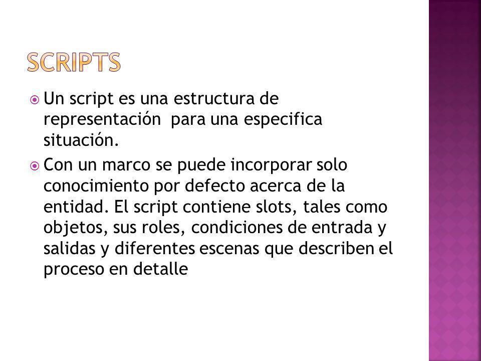 Un script es una estructura de representación para una especifica situación.