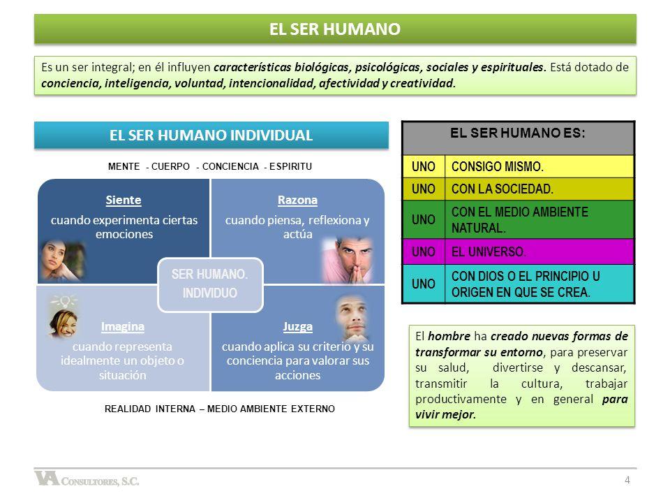 La gran base de esta pirámide se refiere a las necesidades fisiológicas de las personas, que en la medida que estén bien definidas y resueltas, el hombre podrá subsistir físicamente.
