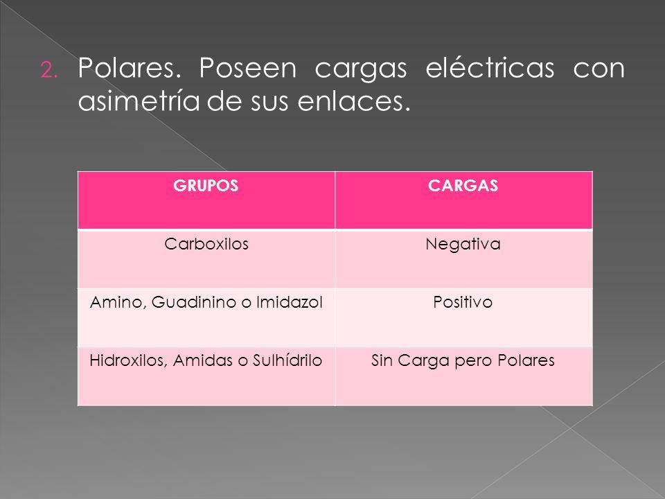 2.Polares. Poseen cargas eléctricas con asimetría de sus enlaces.