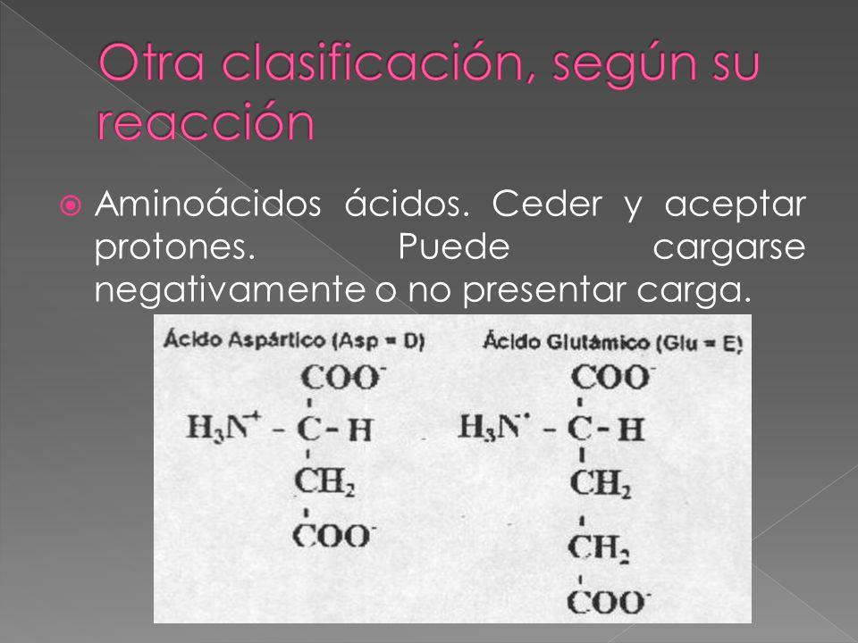 Aminoácidos ácidos. Ceder y aceptar protones. Puede cargarse negativamente o no presentar carga.