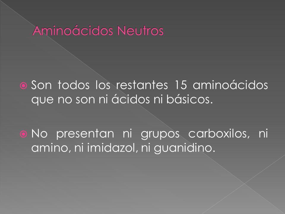 Son todos los restantes 15 aminoácidos que no son ni ácidos ni básicos.