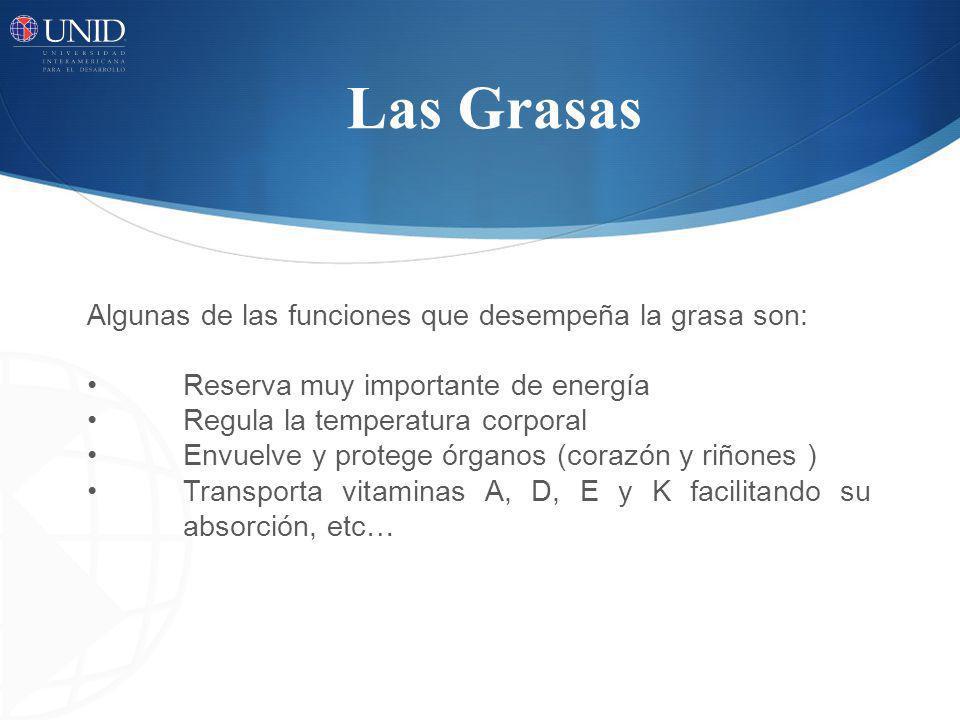 Las Grasas Algunas de las funciones que desempeña la grasa son: Reserva muy importante de energía Regula la temperatura corporal Envuelve y protege ór