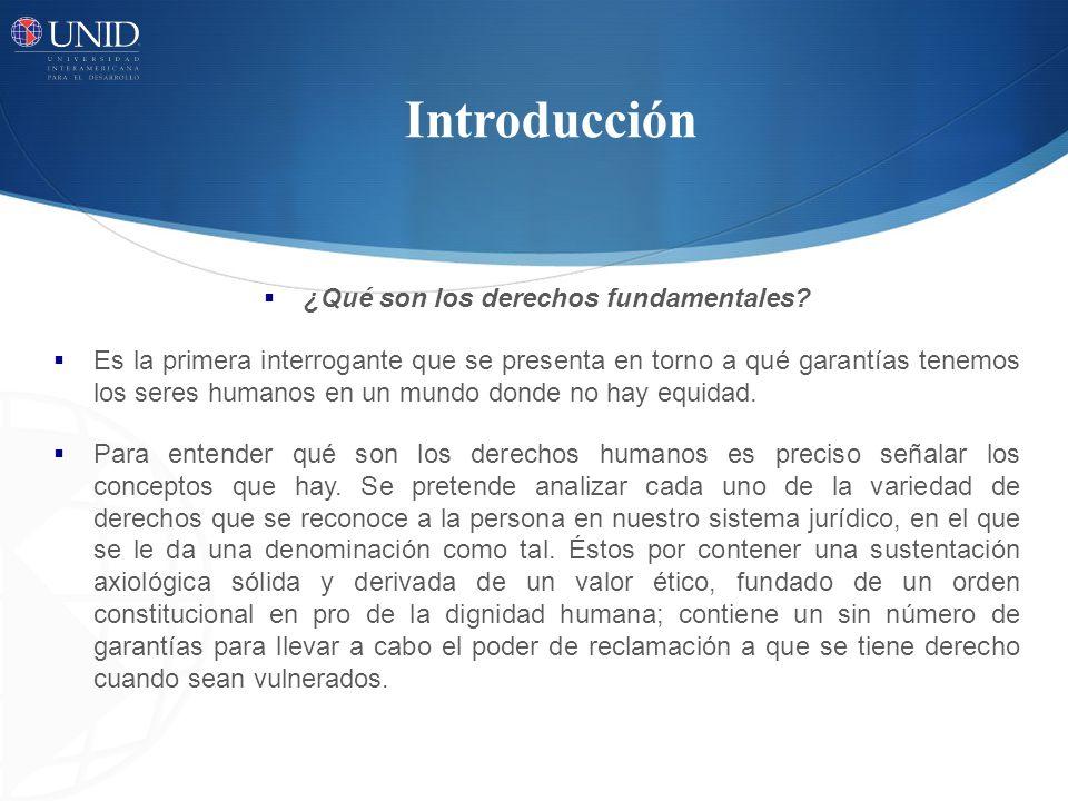 Introducción ¿Qué son los derechos fundamentales? Es la primera interrogante que se presenta en torno a qué garantías tenemos los seres humanos en un