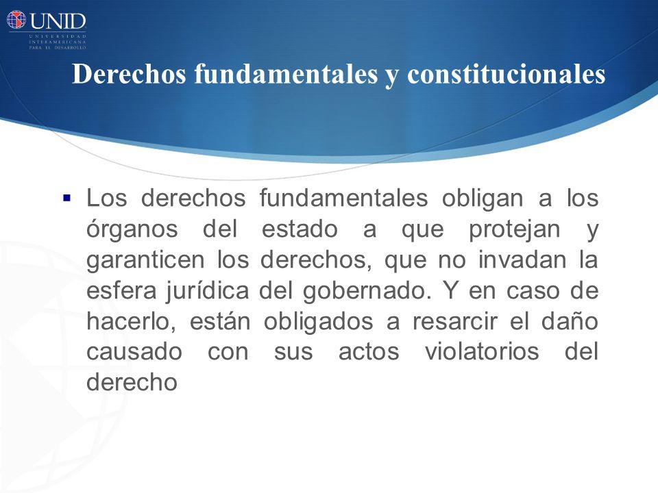Derechos fundamentales y constitucionales Los derechos fundamentales obligan a los órganos del estado a que protejan y garanticen los derechos, que no