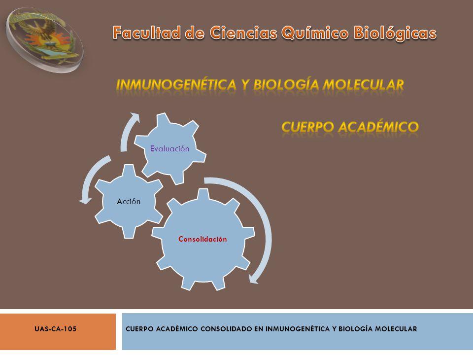 CUERPO ACADÉMICO CONSOLIDADO EN INMUNOGENÉTICA Y BIOLOGÍA MOLECULARUAS-CA-105 Consolidación Acción Evaluación