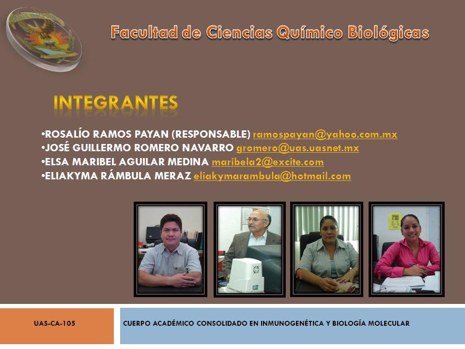 ROSALÍO RAMOS PAYAN (RESPONSABLE) ramospayan@yahoo.com.mxramospayan@yahoo.com.mx JOSÉ GUILLERMO ROMERO NAVARRO gromero@uas.uasnet.mxgromero@uas.uasnet