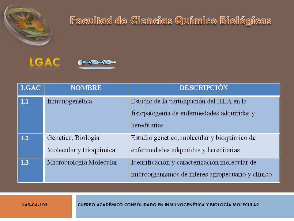 AGOSTO 2005 ENERO 2011 CUERPO ACADÉMICO CONSOLIDADO EN INMUNOGENÉTICA Y BIOLOGÍA MOLECULARUAS-CA-105