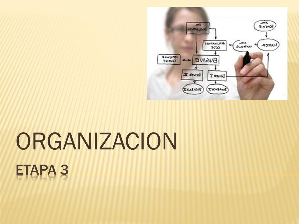 Este grupo se divide en dos tipos de organigramas: Generales: Contienen información representativa de una organización hasta determinado nivel jerárquico, según su magnitud y características.