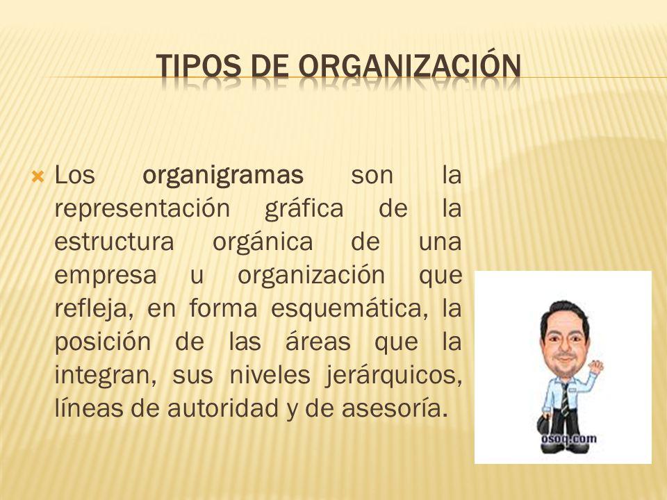 Los organigramas son la representación gráfica de la estructura orgánica de una empresa u organización que refleja, en forma esquemática, la posición