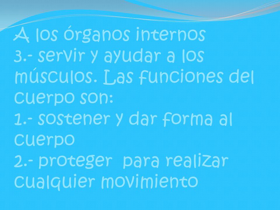 A los órganos internos 3.- servir y ayudar a los músculos. Las funciones del cuerpo son: 1.- sostener y dar forma al cuerpo 2.- proteger para realizar