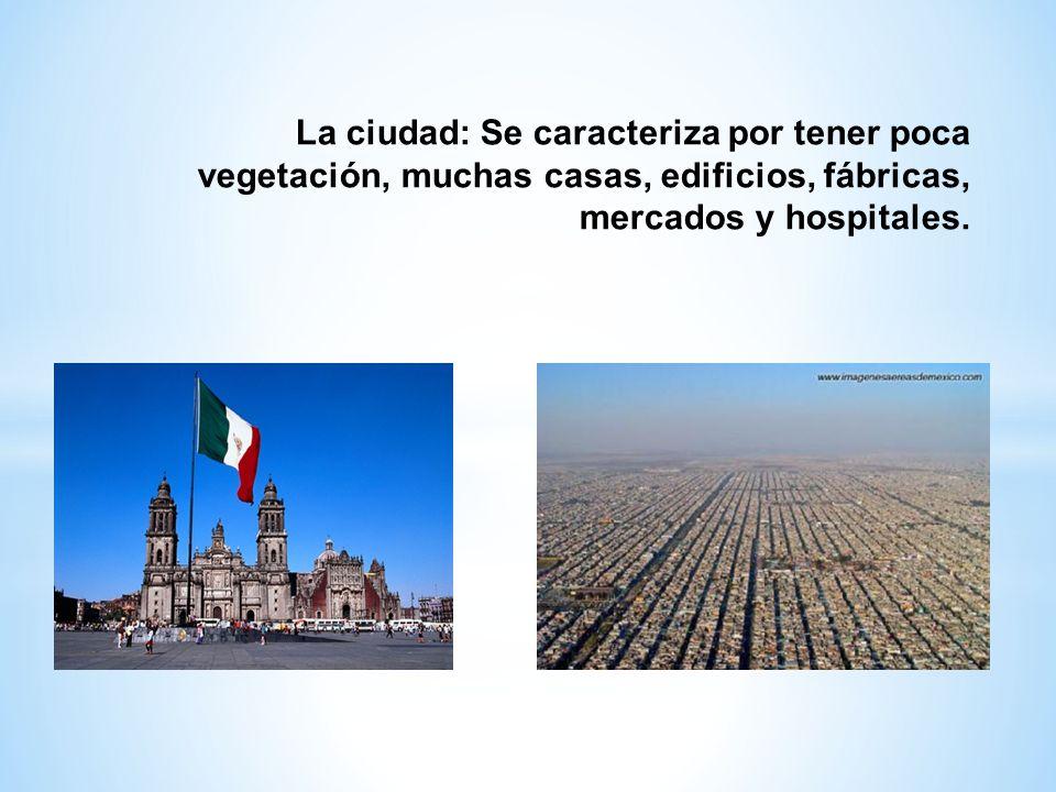 La ciudad: Se caracteriza por tener poca vegetación, muchas casas, edificios, fábricas, mercados y hospitales.