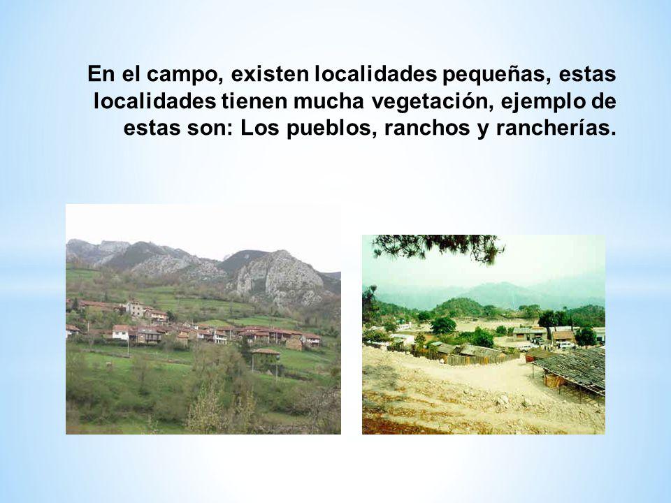 En el campo, existen localidades pequeñas, estas localidades tienen mucha vegetación, ejemplo de estas son: Los pueblos, ranchos y rancherías.
