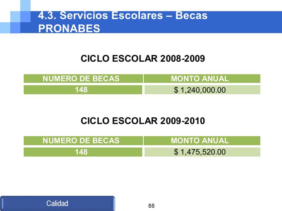 4.3. Servicios Escolares – Becas PRONABES Calidad 66