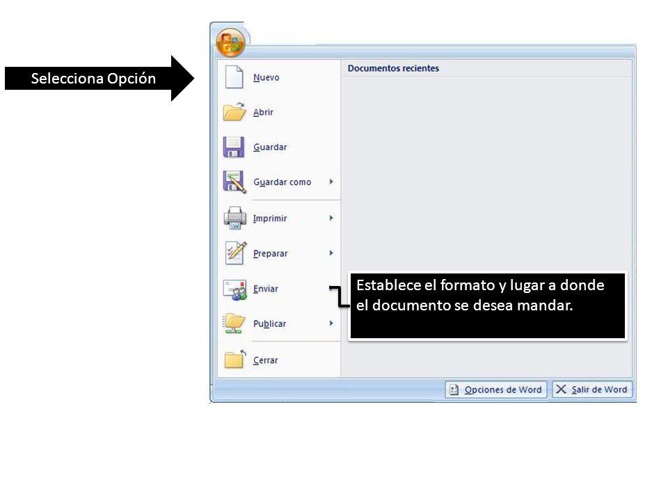 Selecciona Opción Establece el formato y lugar a donde el documento se desea mandar.