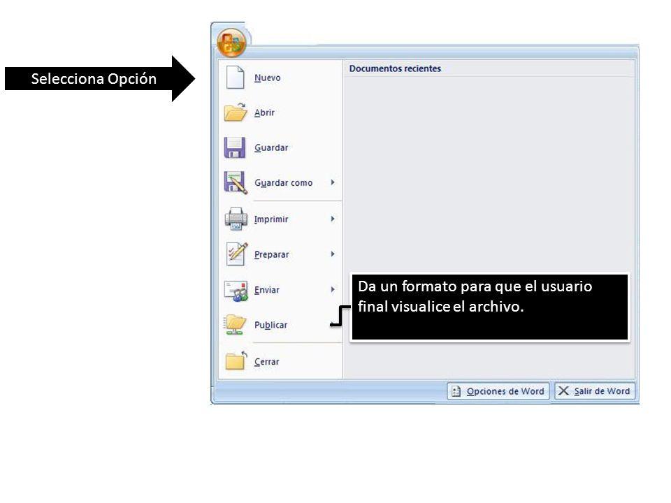 Selecciona Opción Da un formato para que el usuario final visualice el archivo.