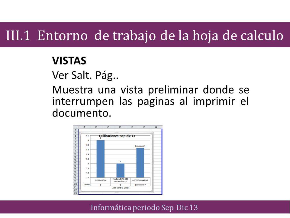 VISTAS Ver Salt. Pág.. Muestra una vista preliminar donde se interrumpen las paginas al imprimir el documento. III.1 Entorno de trabajo de la hoja de