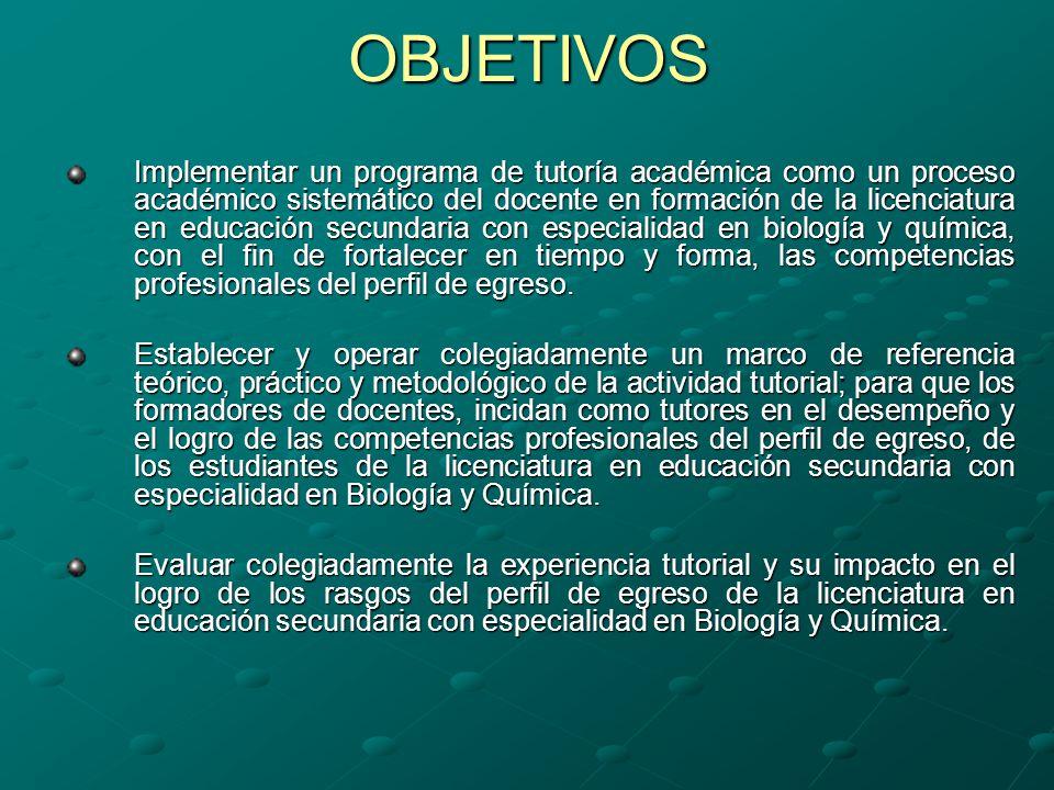 INSTRUMENTO DE ANÁLISIS DE LA ACCIÓN TUTORIAL: Acción tutorial.