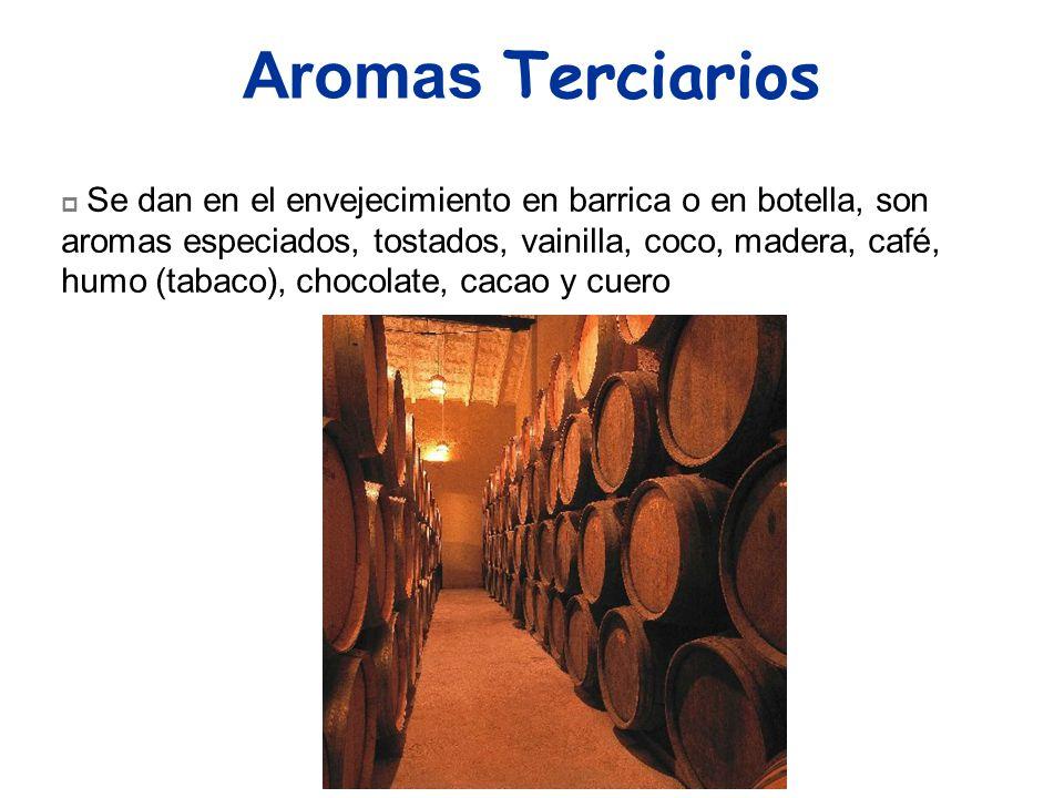 Aromas Terciarios Se dan en el envejecimiento en barrica o en botella, son aromas especiados, tostados, vainilla, coco, madera, café, humo (tabaco), c