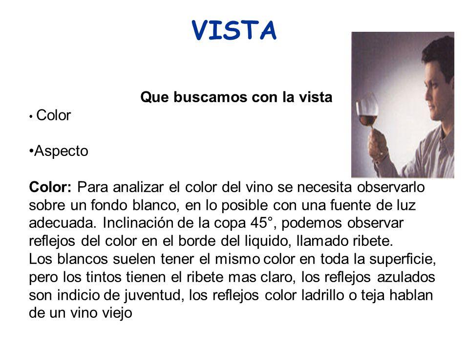 VISTA Que buscamos con la vista Color Aspecto Color: Para analizar el color del vino se necesita observarlo sobre un fondo blanco, en lo posible con u