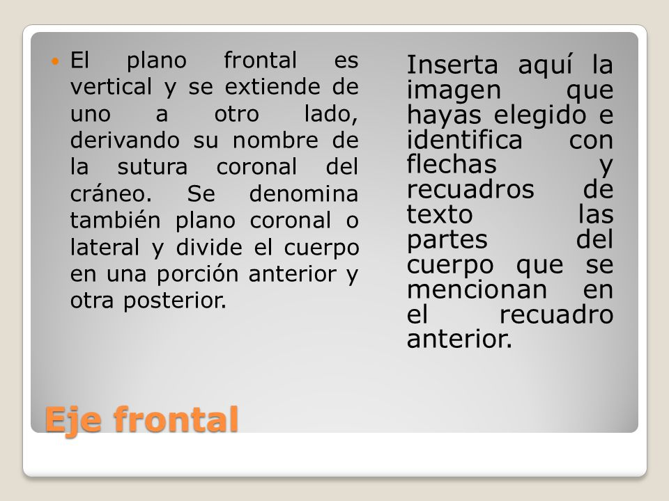 Eje frontal El plano frontal es vertical y se extiende de uno a otro lado, derivando su nombre de la sutura coronal del cráneo. Se denomina también pl