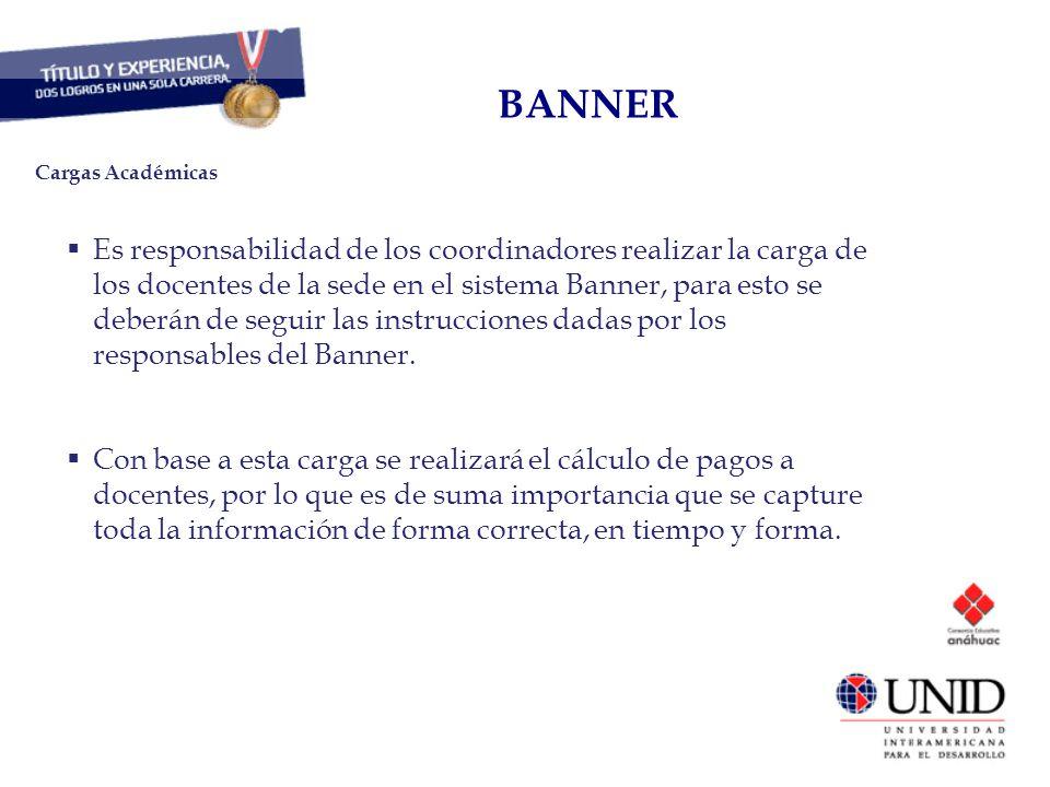 CAPITAL HUMANO BANNER Es responsabilidad de los coordinadores realizar la carga de los docentes de la sede en el sistema Banner, para esto se deberán