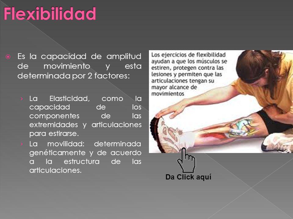 Es la capacidad de amplitud de movimiento y esta determinada por 2 factores: La Elasticidad, como la capacidad de los componentes de las extremidades y articulaciones para estirarse.