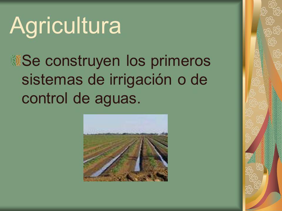 Consecuencia del cambio de tecnología en la agricultura Movilización de la mano de obra para la realización de los proyectos hidráulicos Segmentación social