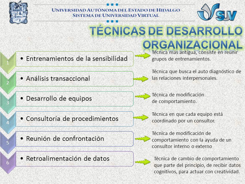 1 Entrenamientos de la sensibilidad 2 Análisis transaccional 3 Desarrollo de equipos 4 Consultoría de procedimientos 5 Reunión de confrontación 6 Retroalimentación de datos Técnica más antigua, consiste en reunir grupos de entrenamientos.